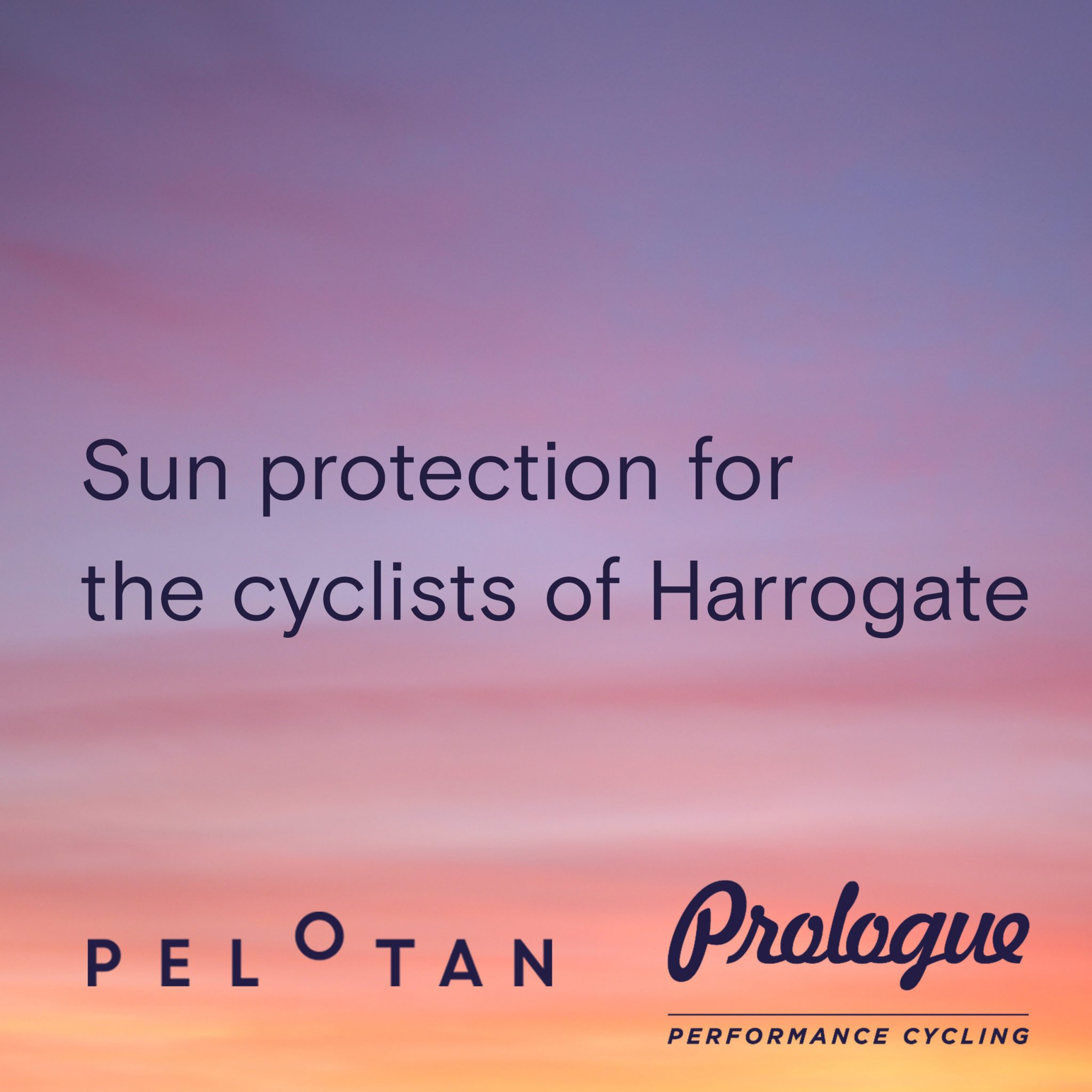 Pelotan Stockist Prologue performance cycling